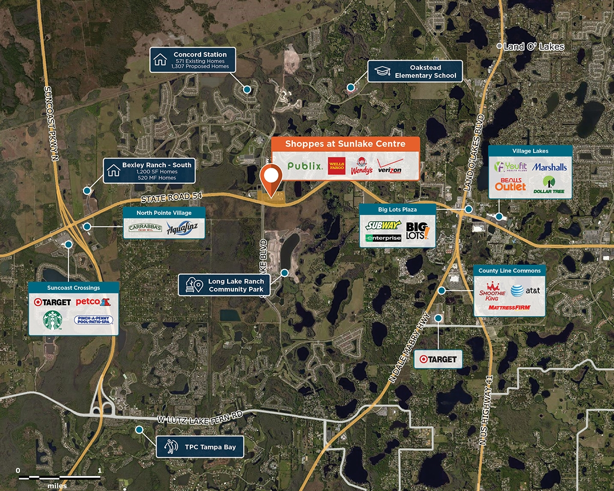 Shoppes at Sunlake Centre Trade Area Map for Lutz, FL 33558