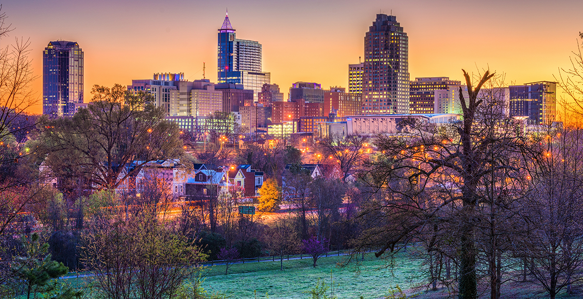 A view of the Raleigh-Durham skyline.
